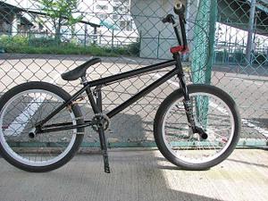 Papa_bike12_2